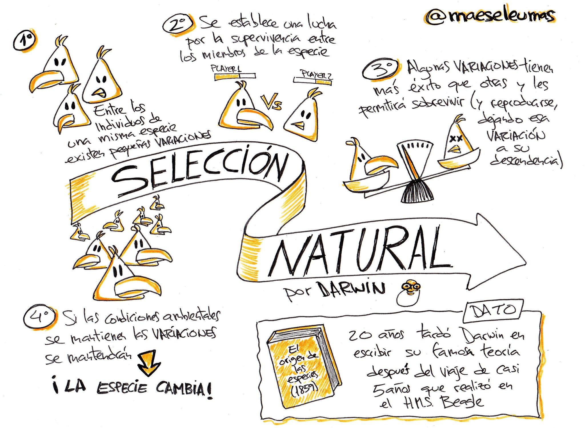 A vueltas con el NOOC de @educaINTEF de #PensarVisual... ¡ahí va mi reto con la teoría de la #SelecciónNatural de Darwin! https://t.co/GeXqZ7TjN3