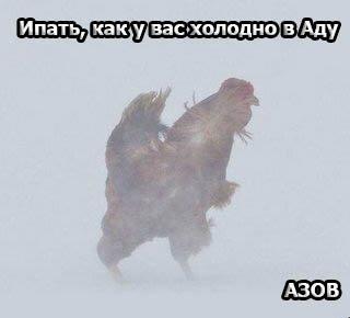 Источники полиции подтверждают ликвидацию Гиви в оккупированном Донецке, - Аброськин - Цензор.НЕТ 9108