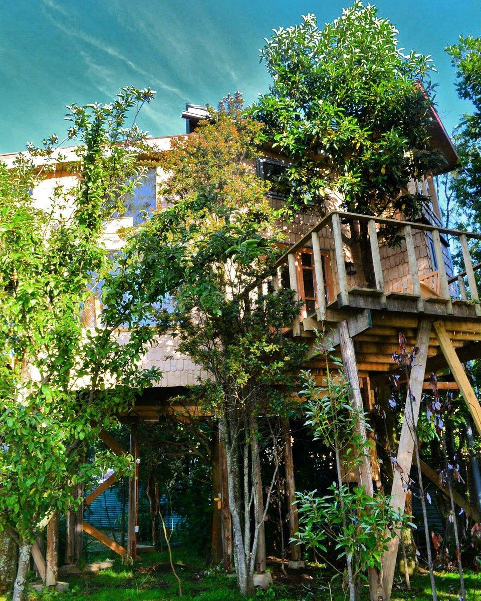 La Casa del rbol de Chilo casadelarbol10 Twitter