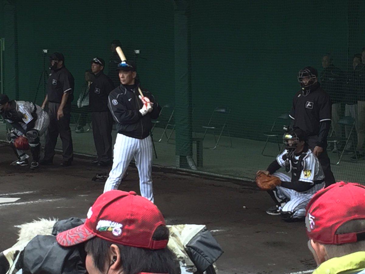 今日のブルペン、小野投手の投球練習中、打席に金本監督が立ちました!すごいオーラでした。 #ちばりよー…