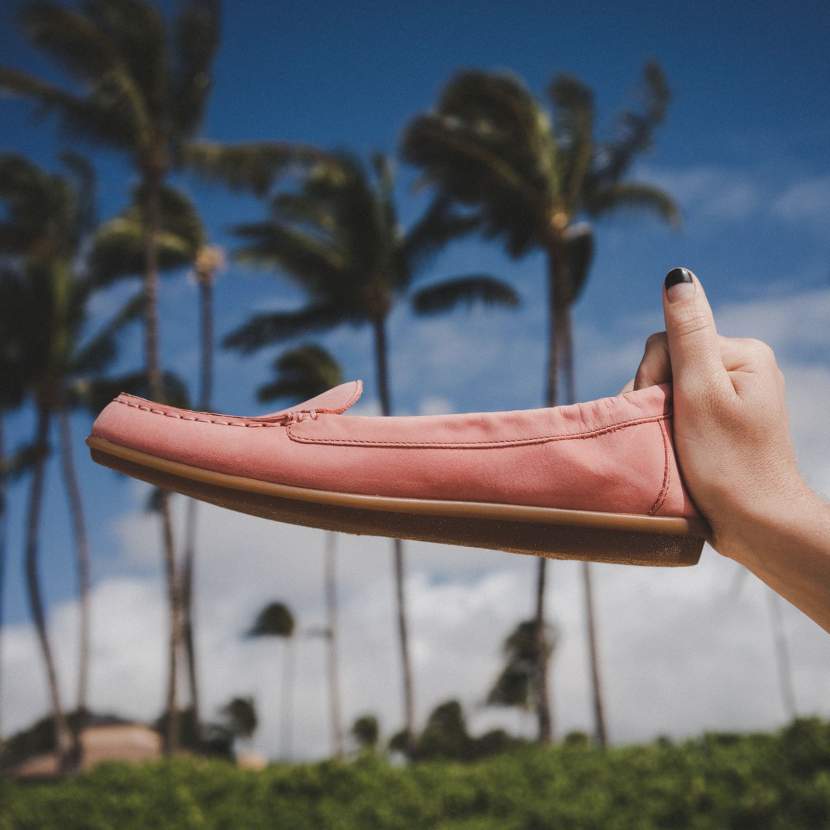 Dreaming of coral flats and tropical weather #winterescape #springarrivals