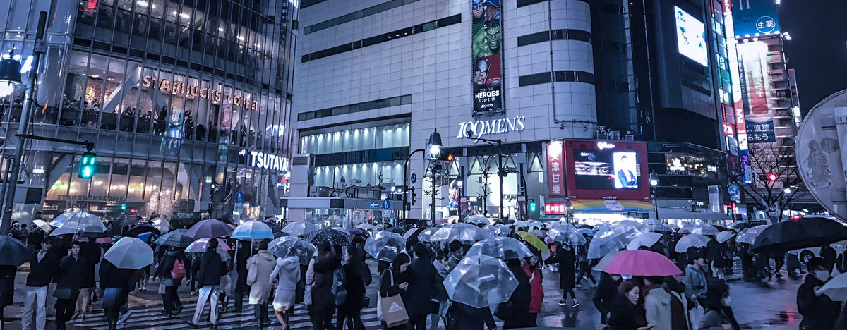 2月の 今日は東京にも雪が降った。