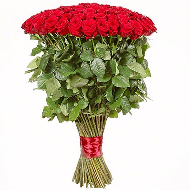 Подснежников цветов, купить розы в москве недорого новостройка