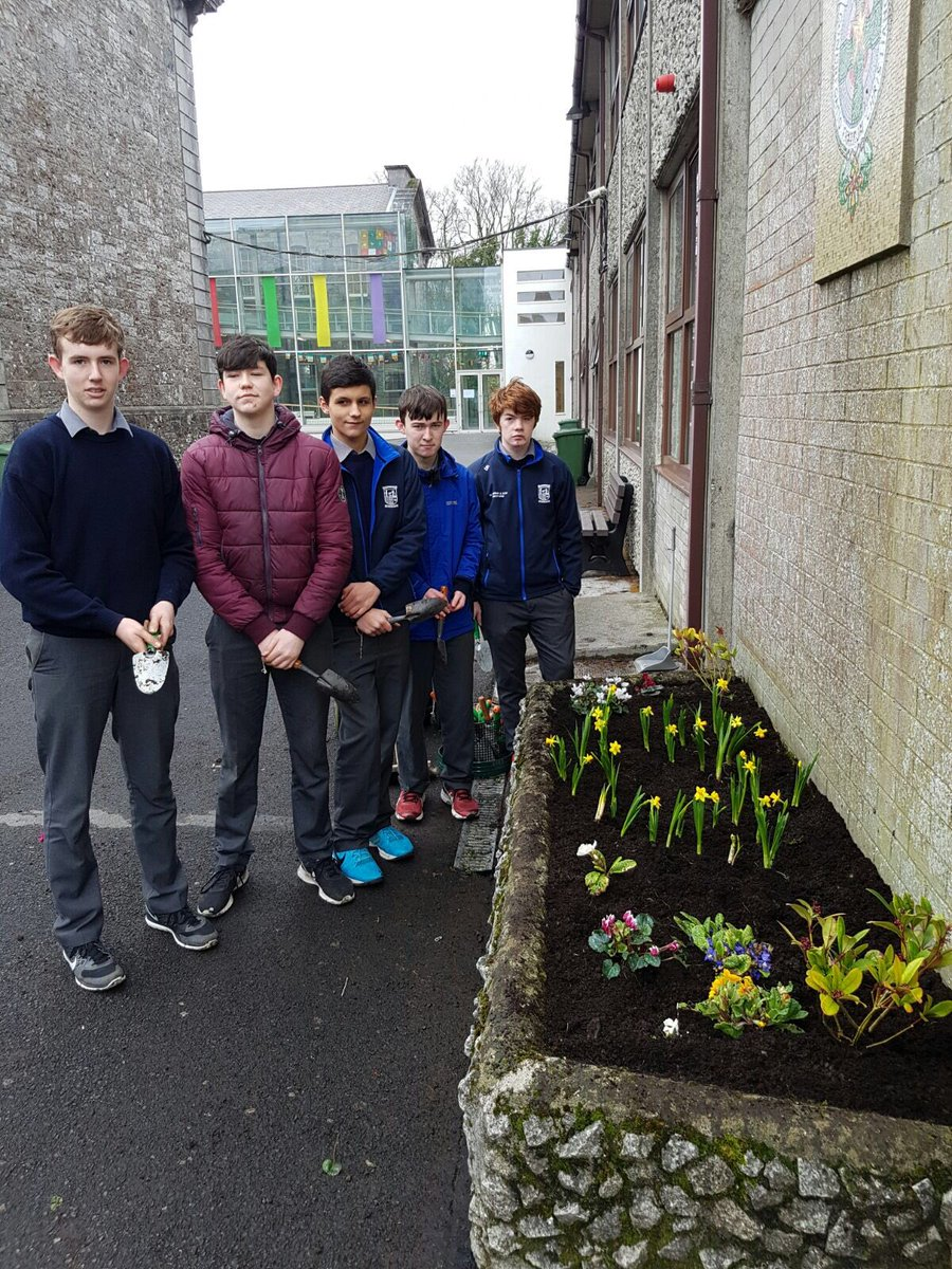 TY students planting miniature yellow daffodils this morning in remembrance of Holocaust victims for Memorial Week.