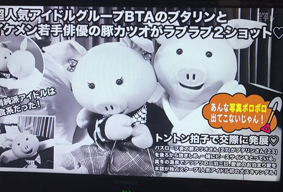 この豚のコンサートに新潟まで行ったことある!  #特定の個人を表現したものではありません #豚だし