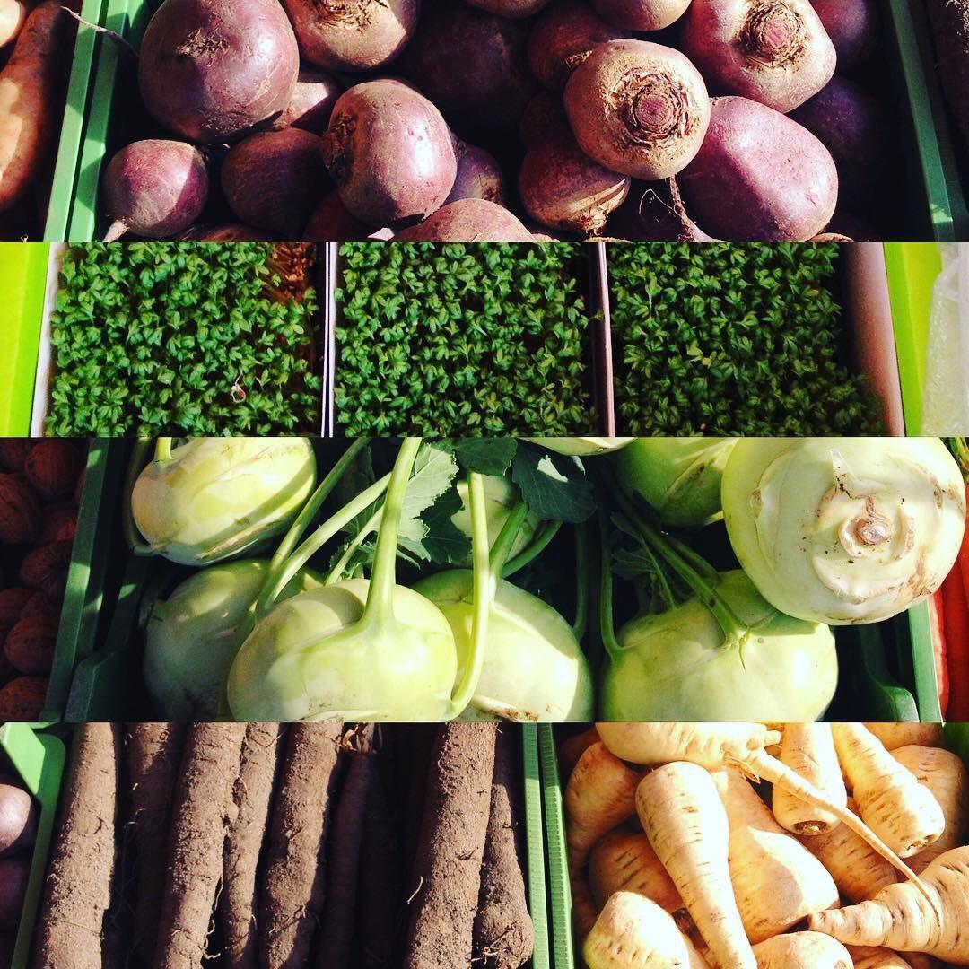 edible tubers vegetables - HD1080×1080