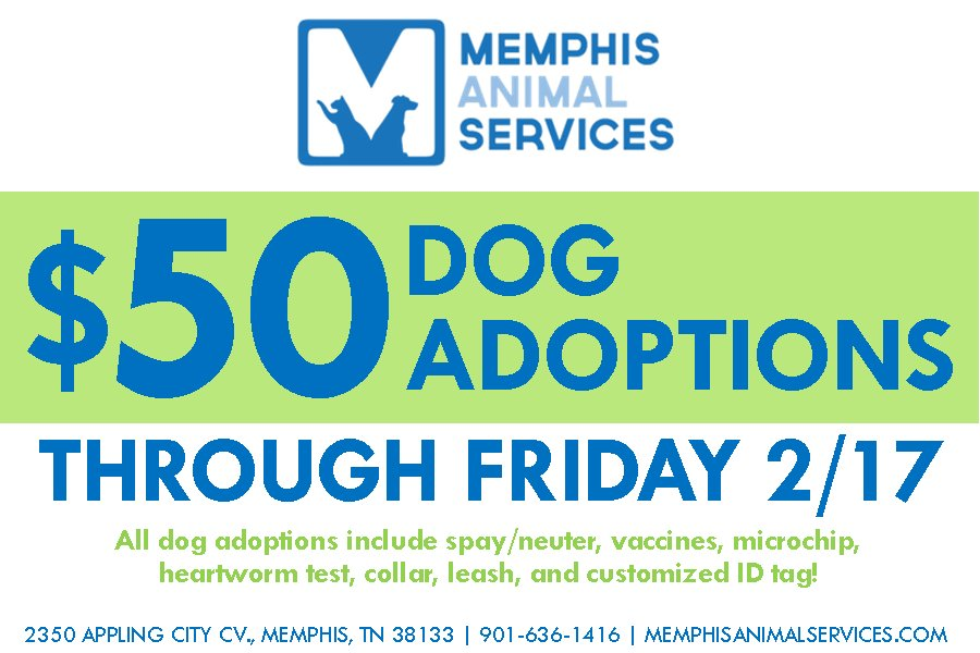 MAS takes in 17 dogs, reduces adoption fee to $50>>https://t.co/lxEkje1F6N #wmc5