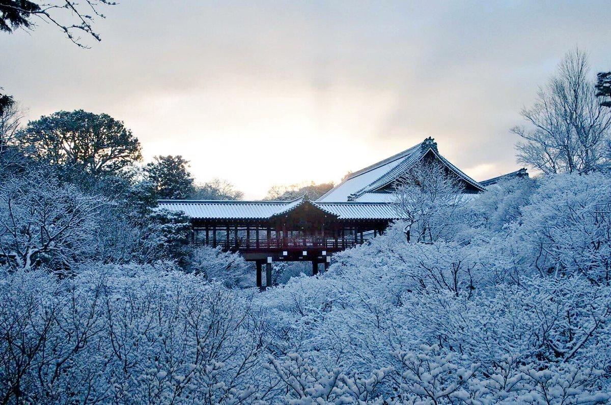 「kyoto snow twitter」の画像検索結果