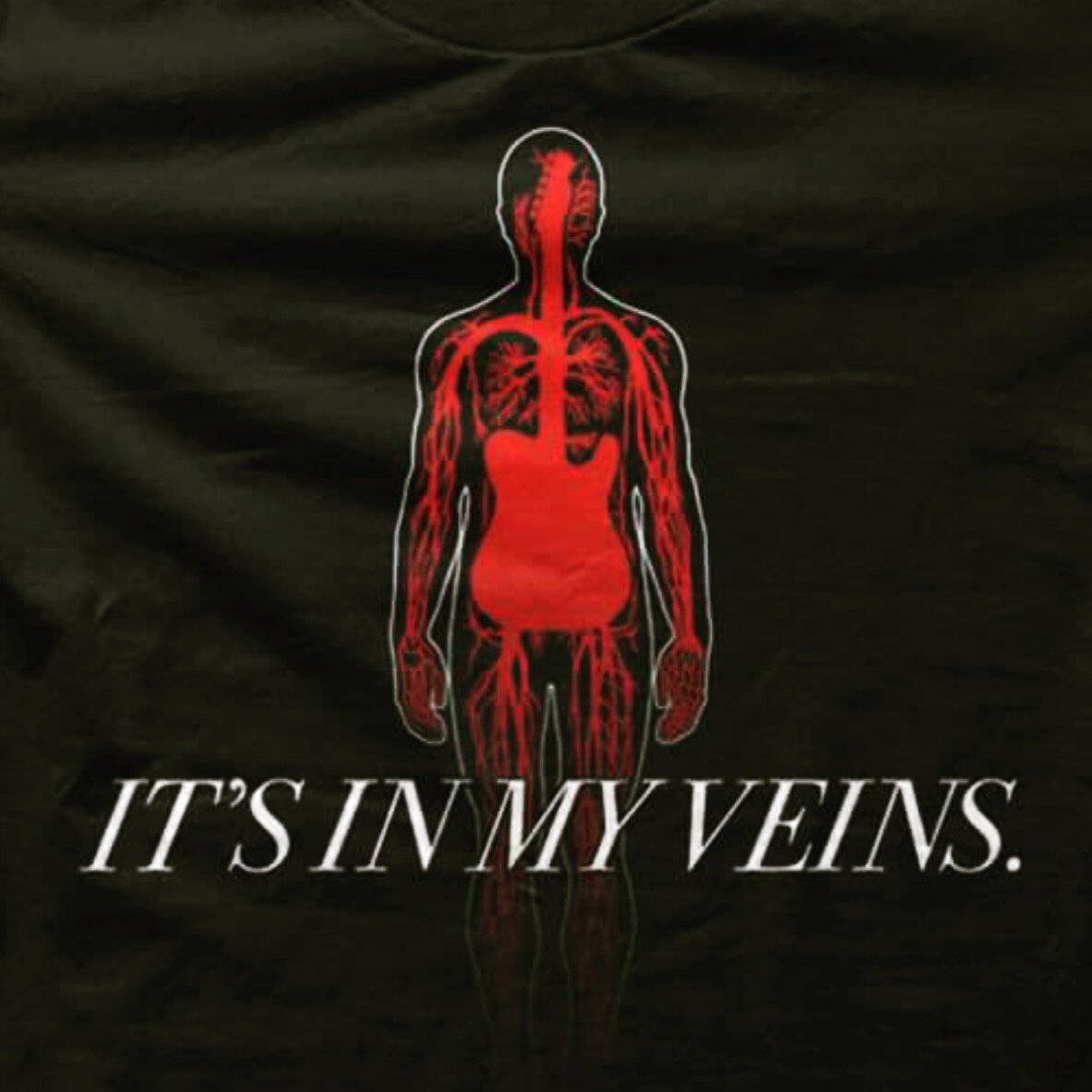 This shirt sums it up pretty good! #inmyveins #guitargeek #luthiers #music4life #musicshirt #guitarshirt #truth<br>http://pic.twitter.com/I7bT6Lo2i4