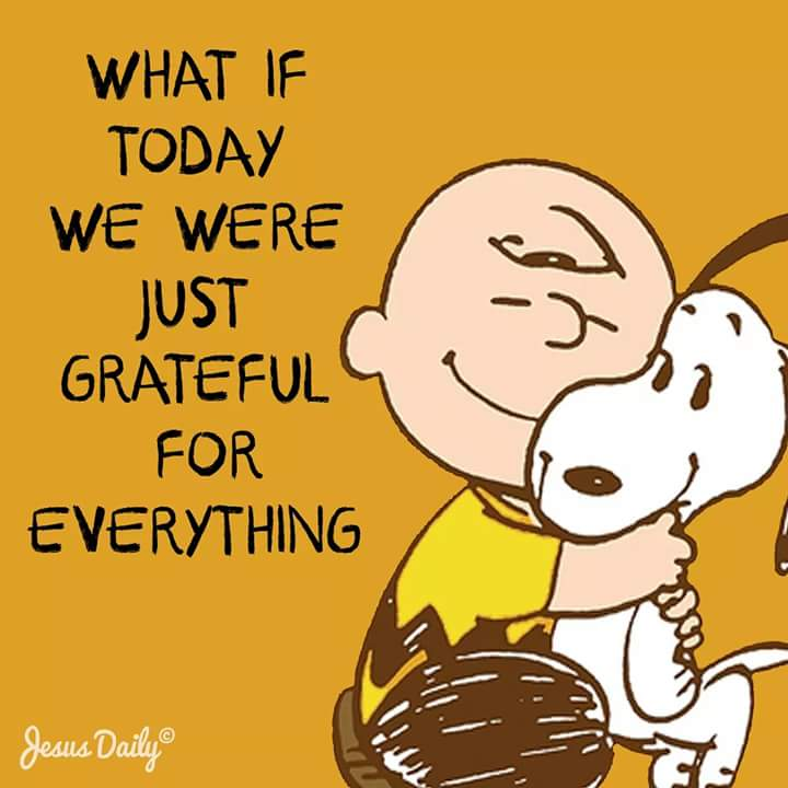 What if today we were just grateful for everything!!