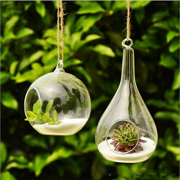 Glass Round with 1 Hole Flower Plant Stand Hanging Vase Hydroponic Decor
