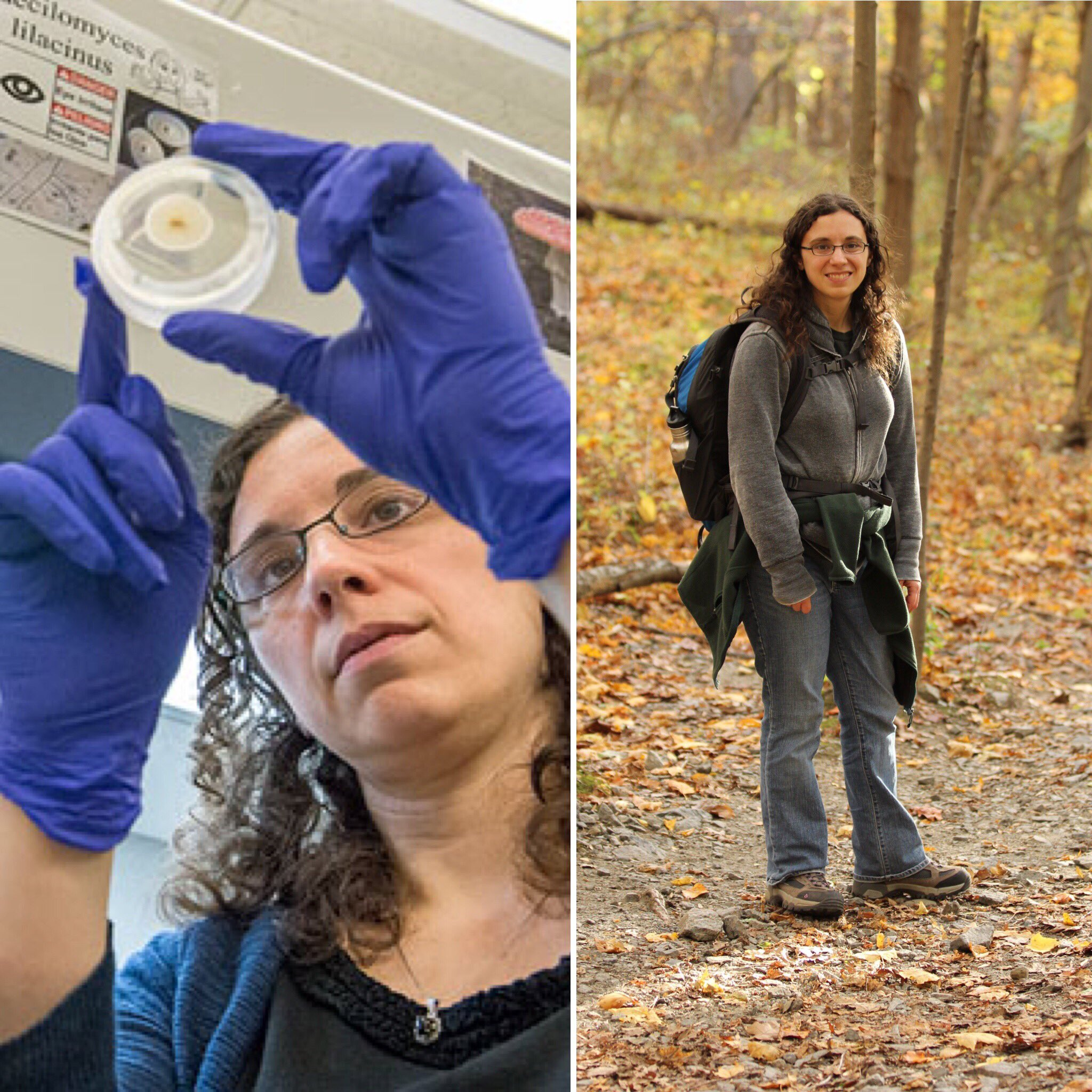 Hi, I'm Michelle. I'm an #actuallivingscientist studying how fungal pathogens influence plant diversity. #WomenScienceDay https://t.co/wqe0FGAzJJ