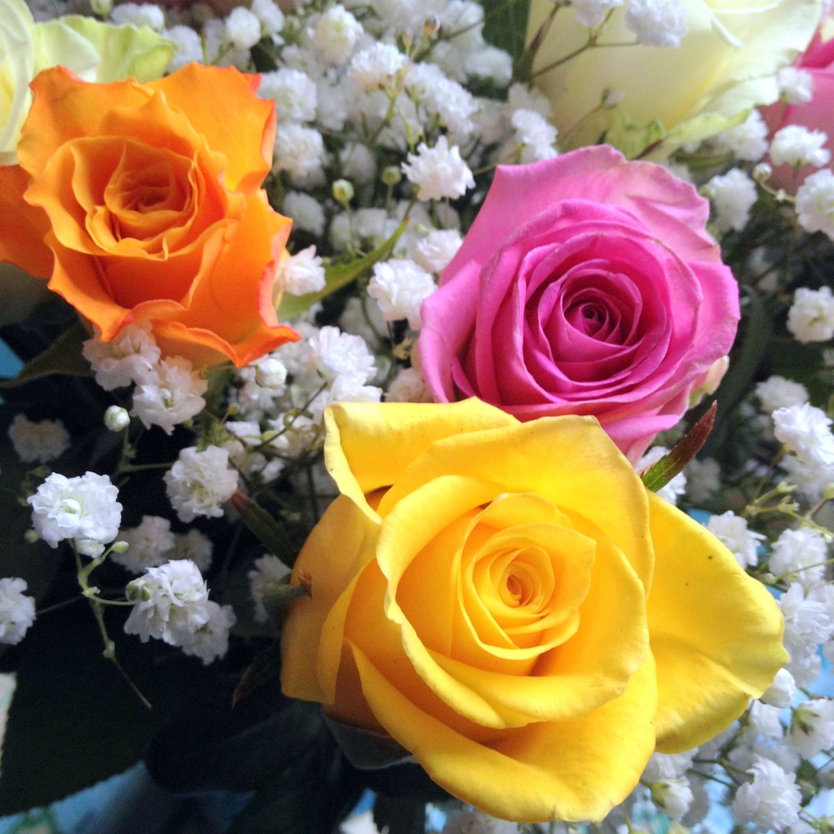 Man vs pink on twitter we well my wife got some lovely roses we well my wife got some lovely roses from the husband wife team at smartmensflower httpmanvspinkreviewsmart mens flowers delivery service izmirmasajfo