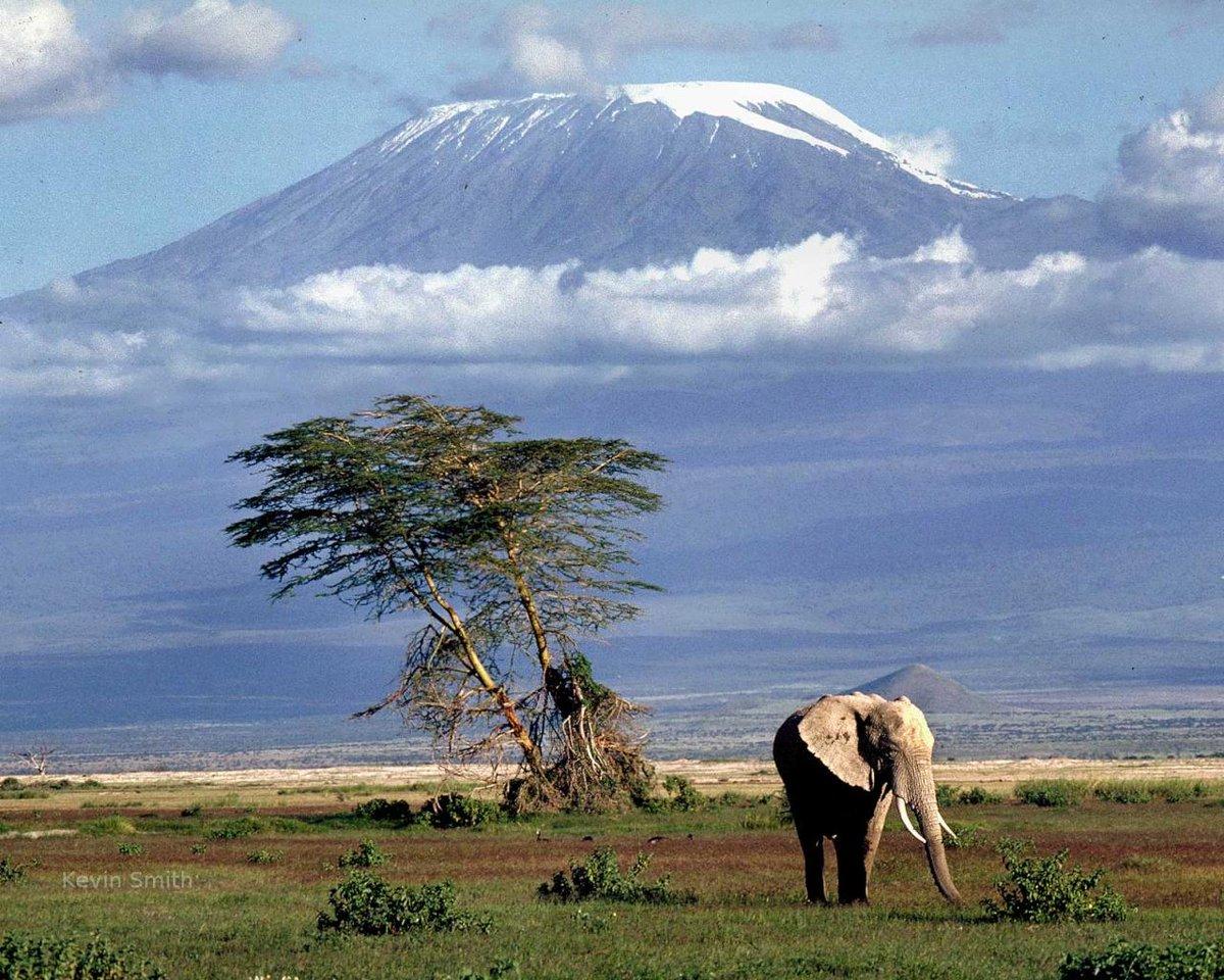 IMAGE: Mount Kilimanjaro, Tanzania https://t.co/w5thbVpLm4