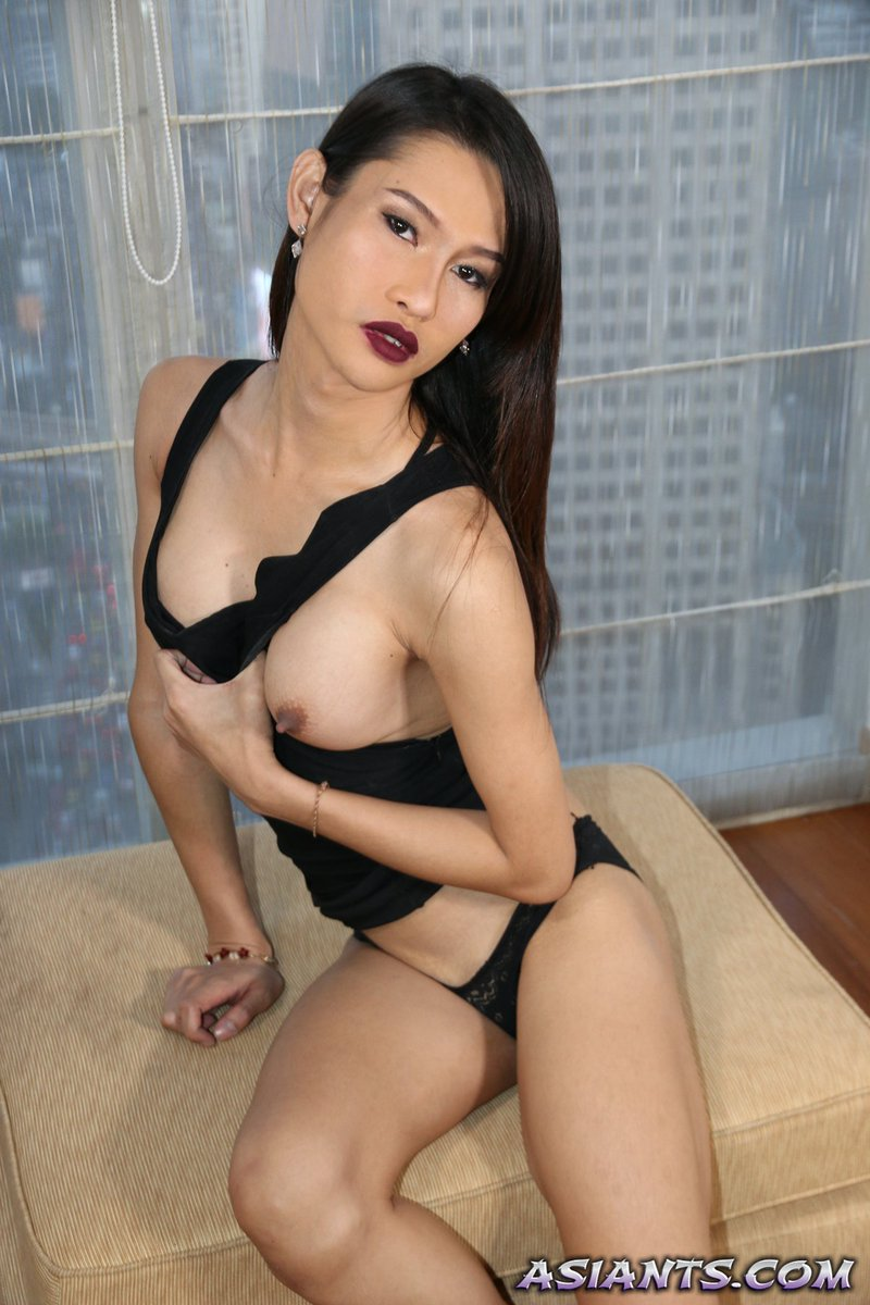 Isac recommend best of ladyboy new