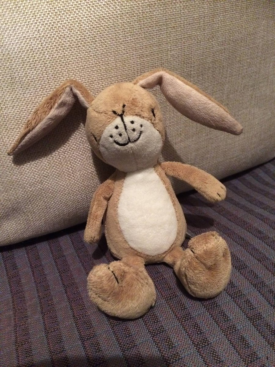 If anyone is on the hunt for this beloved bunny lost at the fireworks on Sat please message us. RT https://t.co/B8mputuuxn