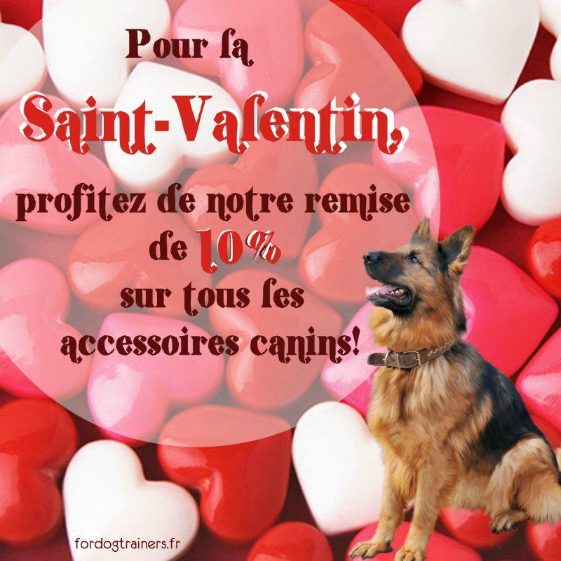 Pour la #SaintValentin, profitez de notre #remise de 10% sur tout l&#39;assortiment de la boutique ForDogTrainers!   https://www. fordogtrainers.fr  &nbsp;  <br>http://pic.twitter.com/x5Sl14jLaE