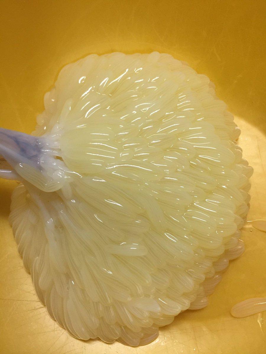 たこの玉子「たこまんま」を吉池で購入。 ビジュアルは少々インパクトあるけど、食べてみたら美味い! 玉…