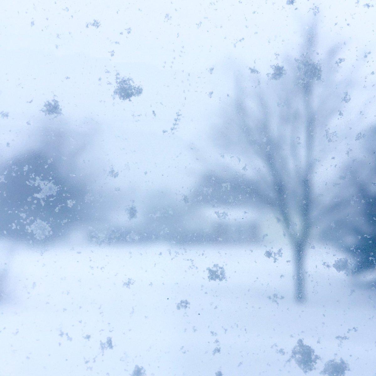 Mère Nature a encore frappé. Une belle tempête à l&#39;Île. #peistorm #pei #snowday #charlottetown @CBCPEI @PEIGuardian @iciacadie @tourismpei<br>http://pic.twitter.com/K8x1Km5woB
