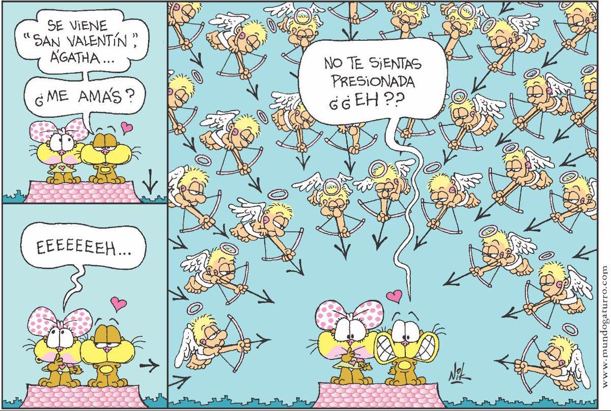 Te estás preparando para el Día de los enamorados?? #BuenLunes #SanVal...