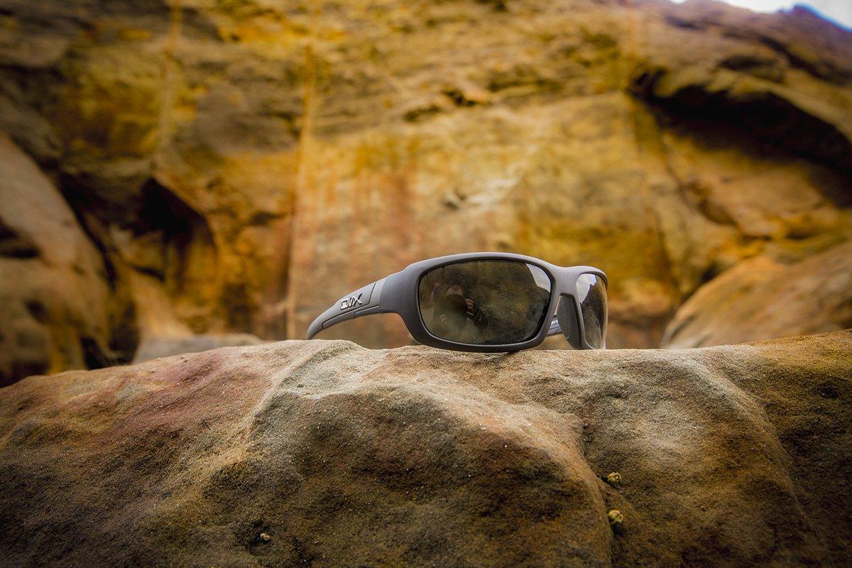 Dvx Sunglasses  dvx eyewear dvxeyewear twitter