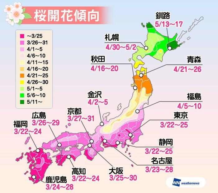 【発表!桜開花傾向2017】今年もだんだんと桜の季節が近づいてきました。過去13年間に寄せられた20…