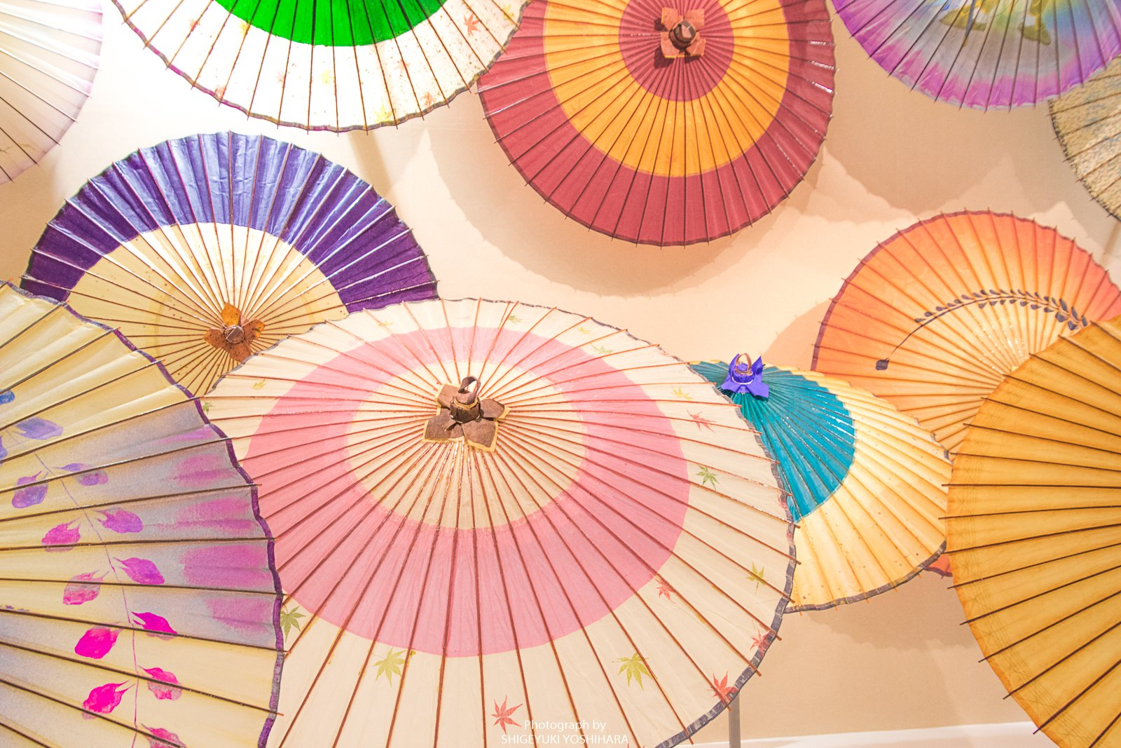 金沢 和 傘