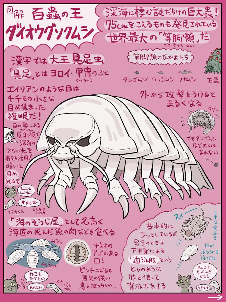 2月14日は何の日でしょうか?…そう、ダイオウグソクムシの命日です。正確には、5年間の絶食を貫くとい…