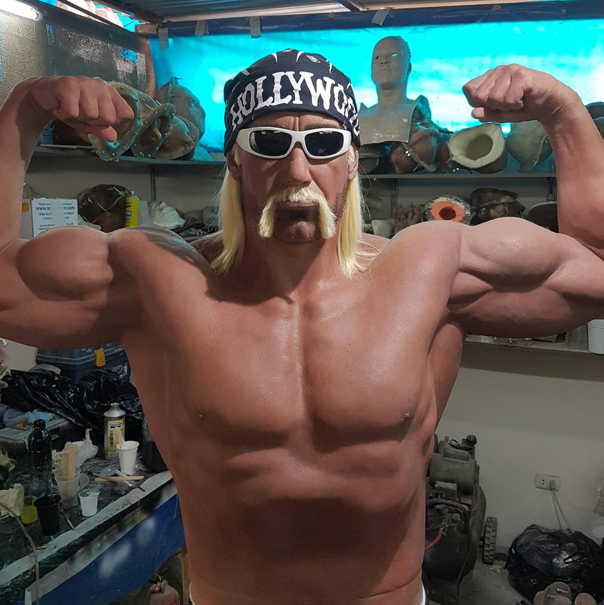 Hulk Hogan Twitter