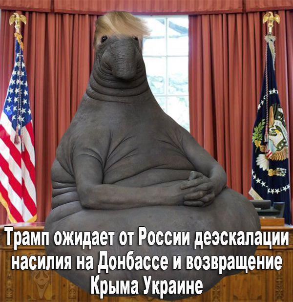 Россия должна ответить за свои действия в Крыму и на Донбассе, - Трамп - Цензор.НЕТ 9920