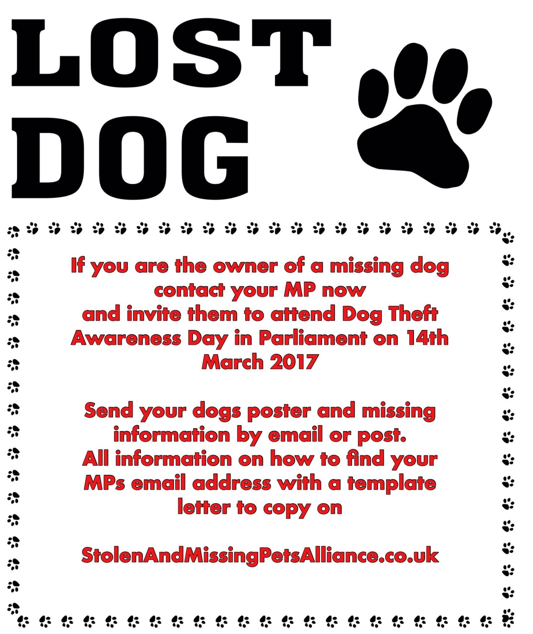 Lost Poster Template Fieldstationco C4pnE FWYAAWprL Lost Poster Template  Lost Poster Template