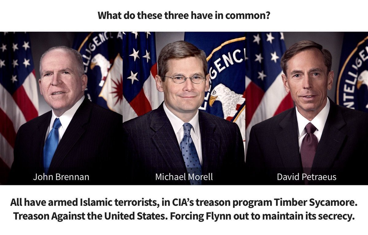 Hired hacks from the Obama administration are behind Mike Flynn firing. #RussiansDidIt #TheFive<br>http://pic.twitter.com/If58Hpeusk