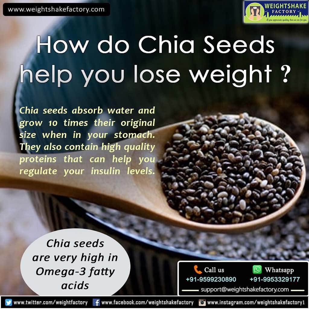 Can Chia Seeds Help You Lose Weight Can Chia Seeds Help You Lose Weight new foto