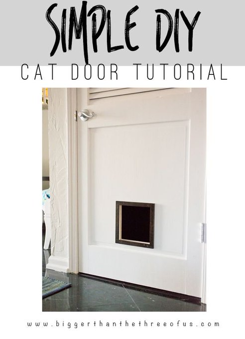 DIY Cat Door