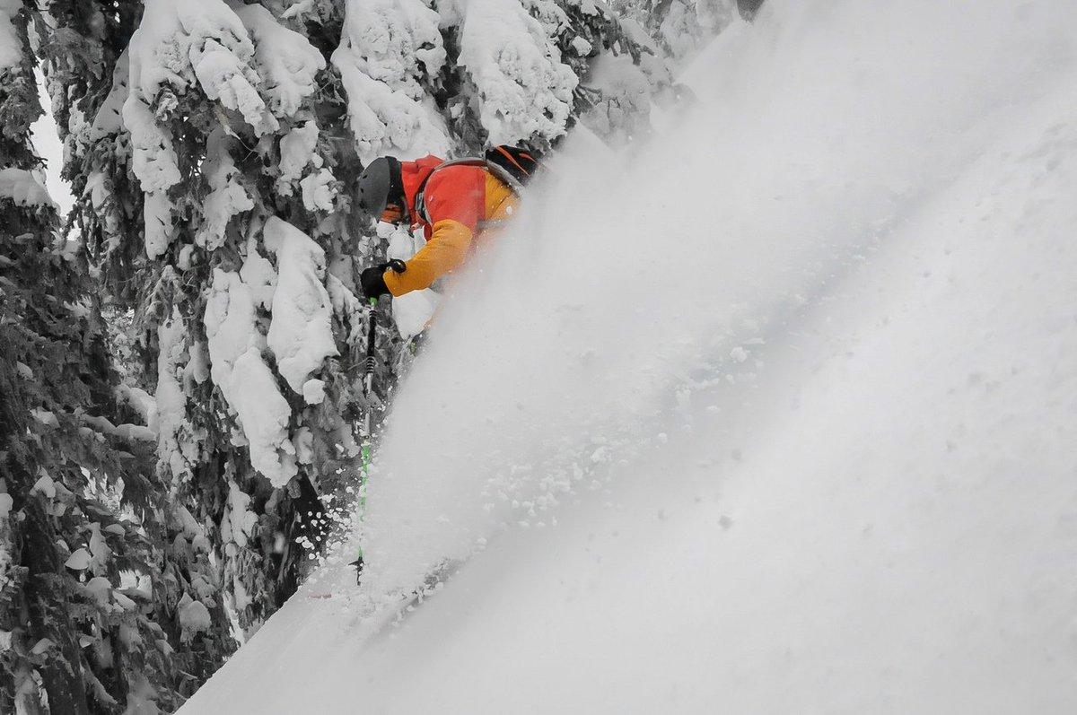 Menudo viaje por el mejor esquí de Canadá se ha pegado nuestro amigo y colaborador Edu, de @110ski.  ➡️https://t.co/poEd33LCpI