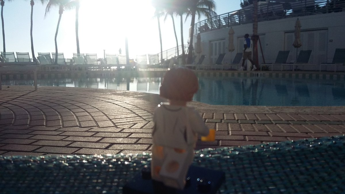 Lego @PacBio #minime contemplating an early morning swim #agbt17 https://t.co/27ZszCuRhX
