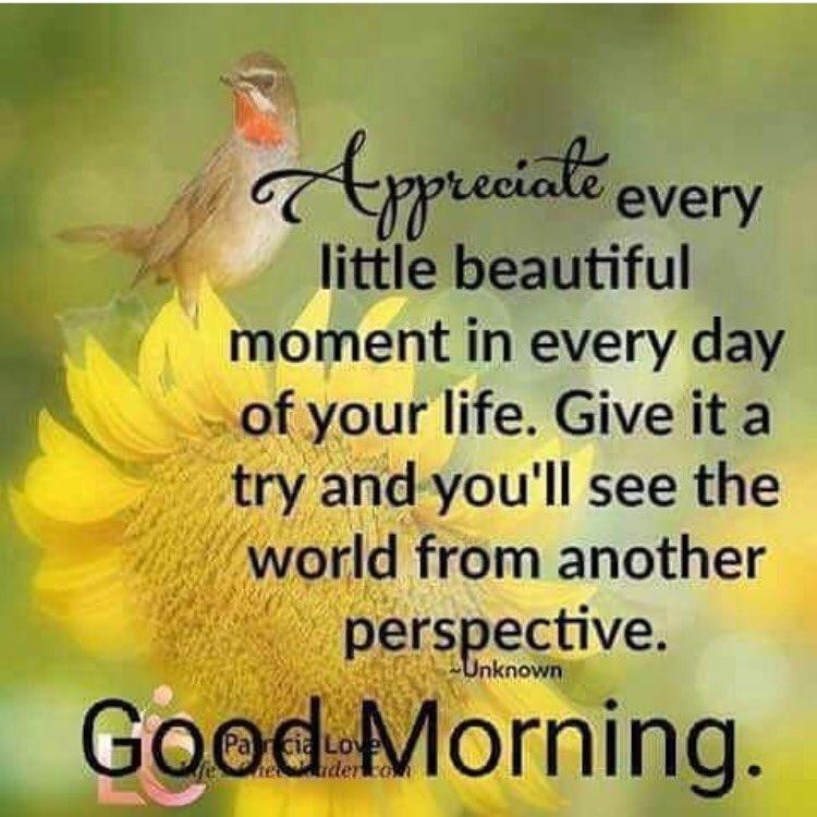 #goodmorning! Appreciate every moment in your #life! #gratitude #attitude #wednesdaymotivation <br>http://pic.twitter.com/qETGENC3Zr