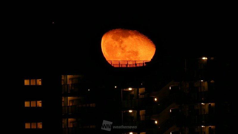 皆さん、寝て待ってましたか?今夜の月は「寝て待つほど遅い」と言われる「寝待月」です。深夜には木星も登…