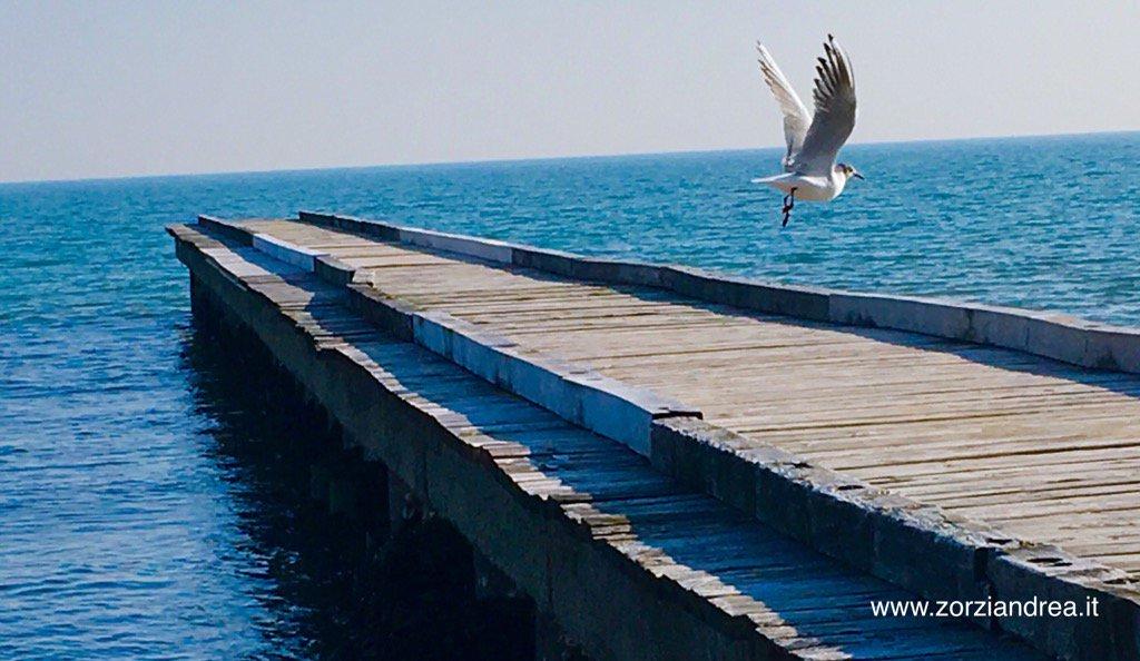 A #jesolo con il #mare #inverno #azconsulenze #semprepresente<br>http://pic.twitter.com/1lKCbzC9eC