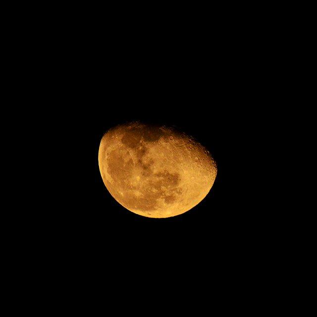 日付替わりが近づいて、東の空に月が昇ってきました。 今夜の月は、お供を連れています。太陽系最大の惑星…
