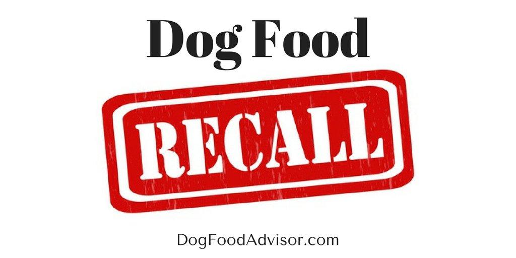 Does Grain Dog Food Cause Hip Dysplasia