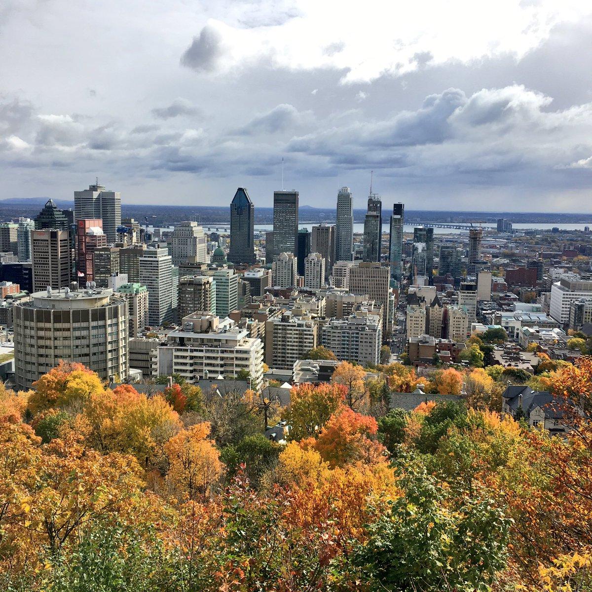 #Montreal meilleure ville universitaire du monde !  #MTL #Quebec #Canada  http:// m.huffpost.com/qc/entry/14768 050 &nbsp; … <br>http://pic.twitter.com/wOOjiuPF7R