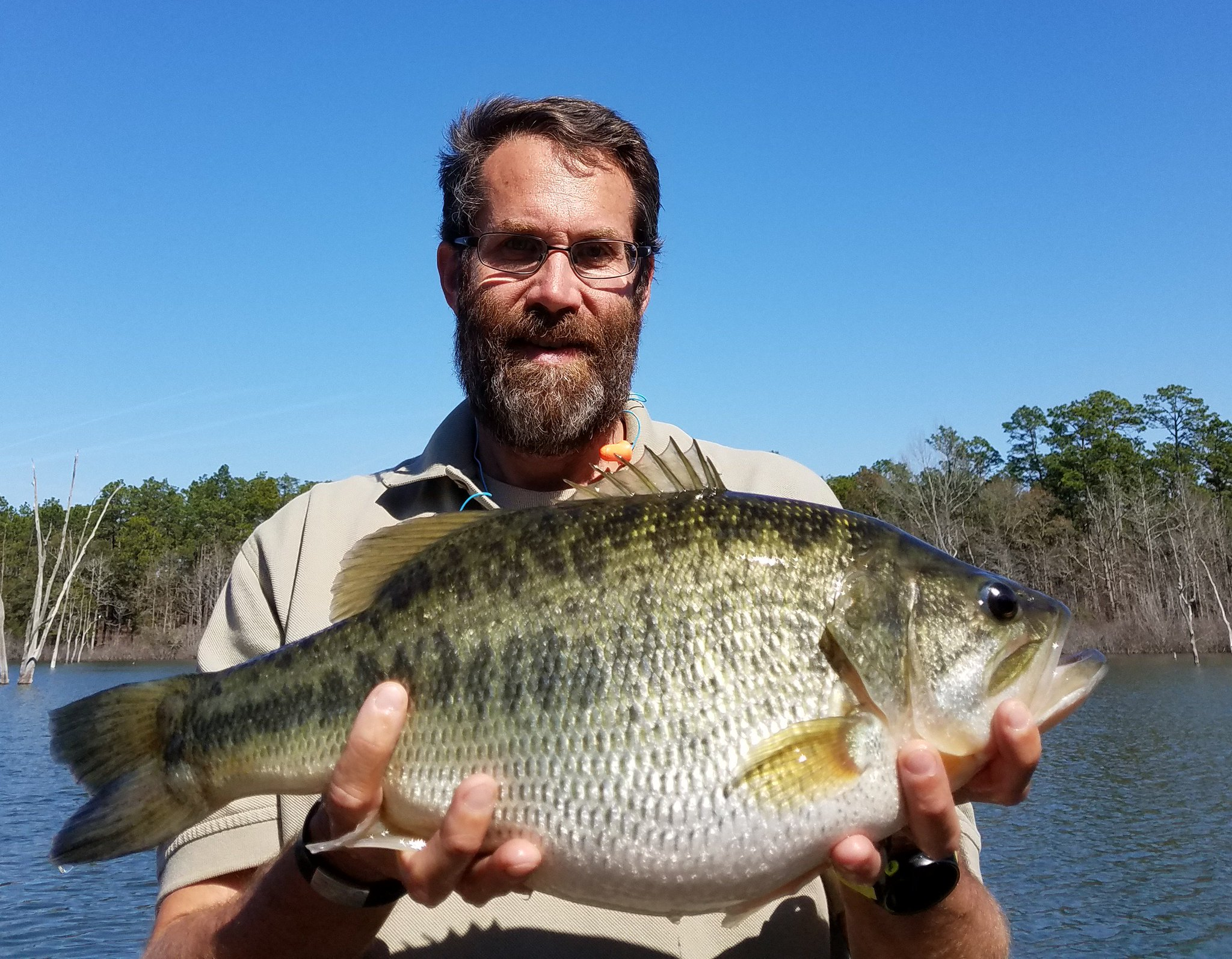 Georgia dnr wildlife on twitter heard of panic pond at for Ga dnr fishing