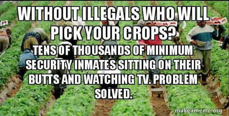 Instead of paying illegals why not get the tens of thousands minimum security inmates out there!! #wednesdaywisdom   <br>http://pic.twitter.com/gQ2SSNBFQ6