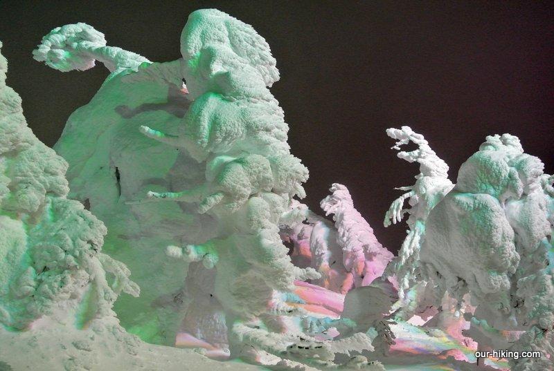 蔵王山でスノーシューイングをしたレポートです。樹氷原のライトアップを見物したり、中央高原のドッコ沼周辺をスノーシューで歩きました。天気が悪くて樹氷原を歩けなかったのが残念です。