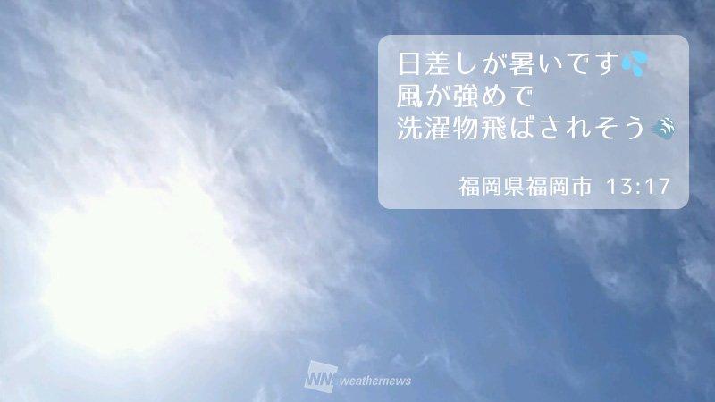 九州北部で春一番!明日は関東・北陸で春一番の可能性があります。 weathernews.jp/s/t…