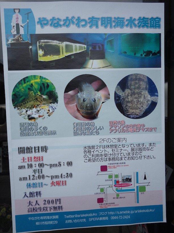最後の立ち寄り先は、やながわ有明海水族館。館長の小宮さんも展示されちゃってるのかな(^ ^)? #九州への旅 #有明海 #福岡