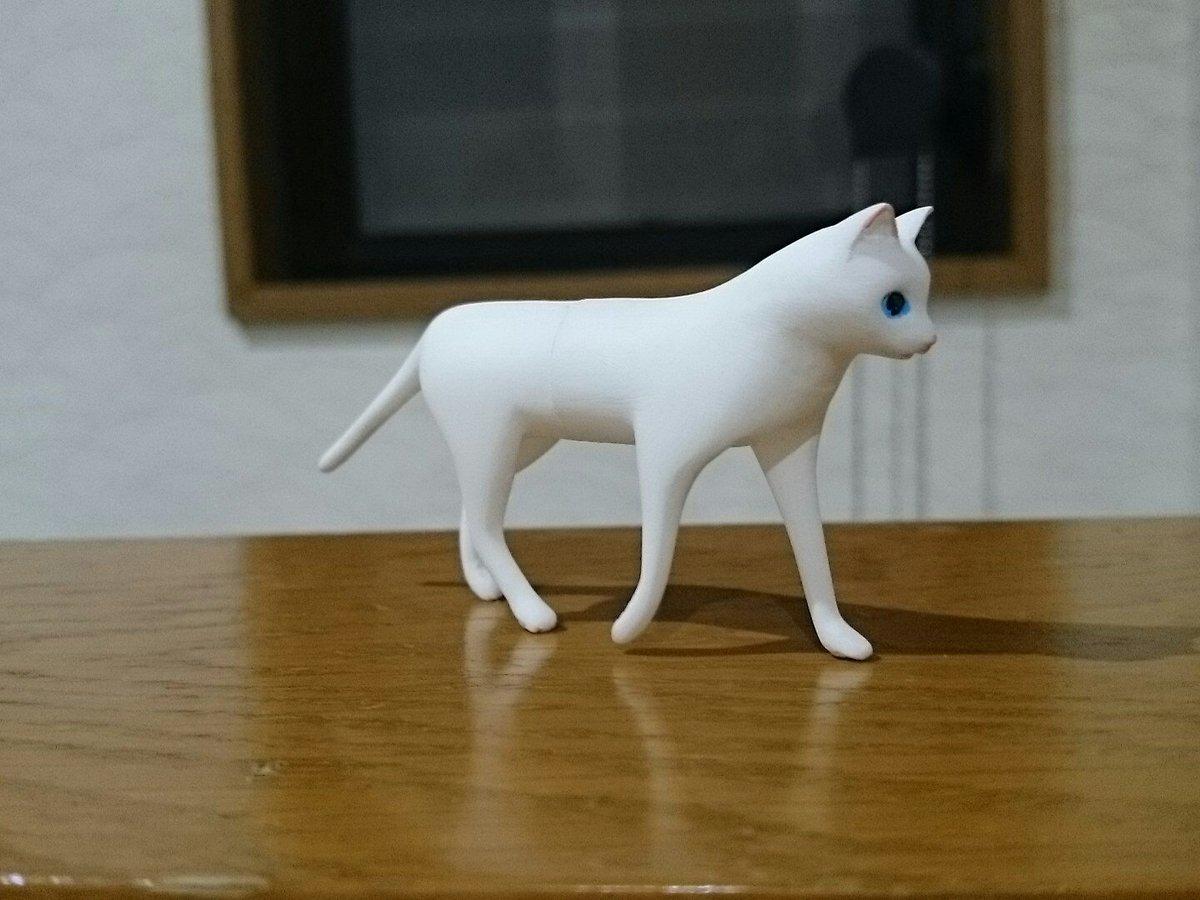 パノラマカメラ猫完成しました