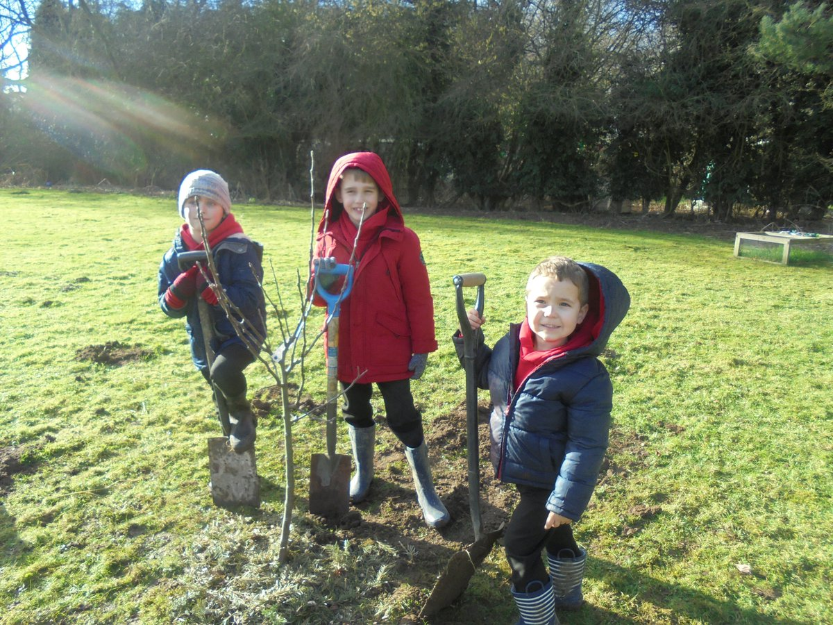 Great afternoon spent with @VictoriaPendry1 and Anneliese Emmans Dean tree planting and &#39;poetree&#39; writing. The sun shone too #forestschools <br>http://pic.twitter.com/tdgyv3nH5w