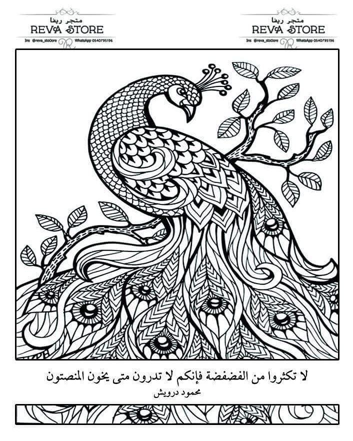 نجاة يتظاهر مارتن لوثر كينغ جونيور رسومات طاووس للتلوين Plasto Tech Com